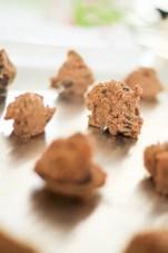 Paleo Chocolate Chip Cookies 06