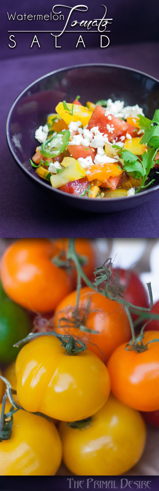 Watermelon Tomato Salad with Cilantro & Jalapeño is a surprisingly well balanced dish that is fresh and light, and perfect for summer! http://wp.me/p4Aygm-20p