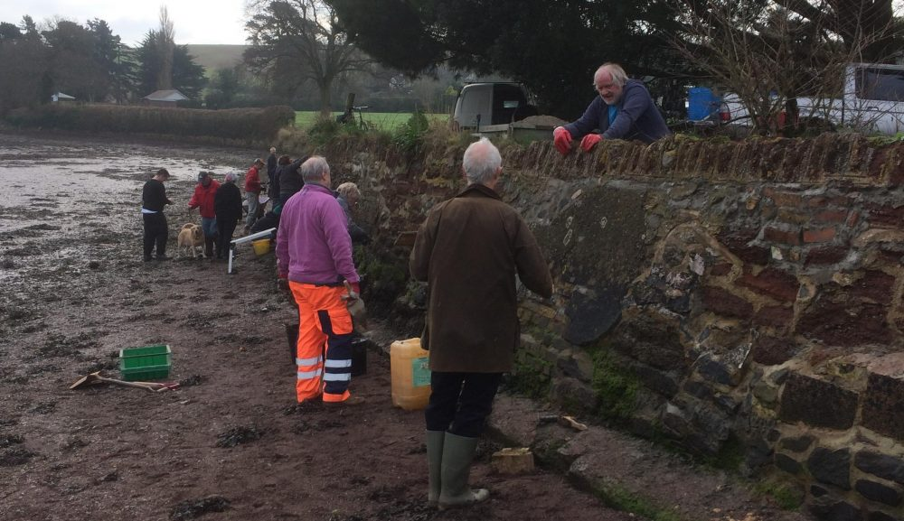 Ancient tide wall repaired by volunteers
