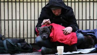 a man on the street with a dog