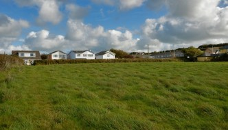 a green field with houses behind