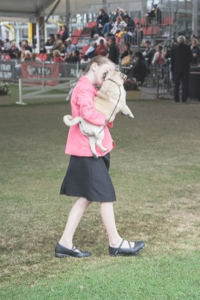 Sydney_Rotal_Dog_Show_The_Pug_Diary_03042015_0091