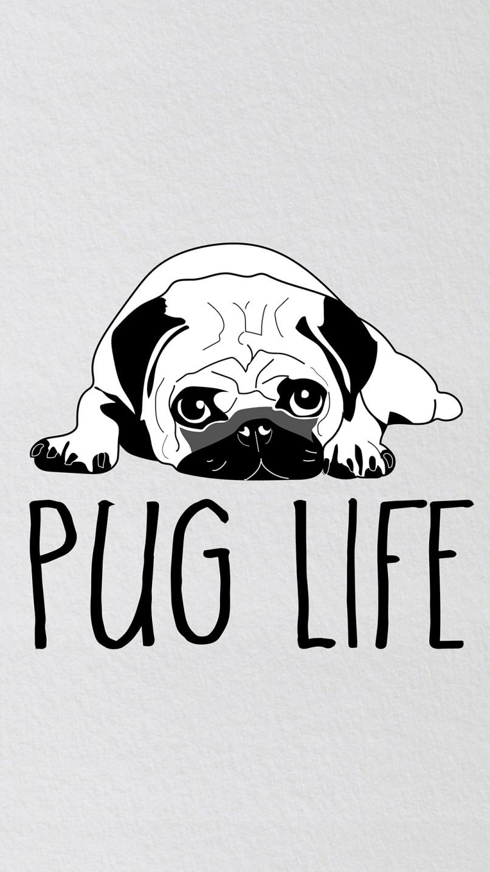 Pug Puppy Wallpaper Iphone Adsleaf Com