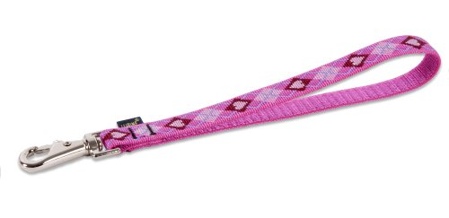 Lupine Training Tab/Leash for Medium and Larger Dogs, 3/4-Inch Wide, Puppy Love