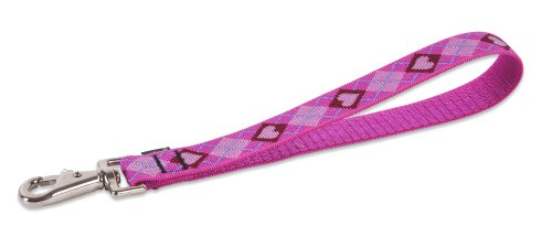 Lupine Training Tab/Leash for Larger Dogs, 1-Inch Wide, Puppy Love