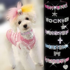 """HOW'S YOUR DOG """"Bling-a-licious"""" Name-Me Personalized Necklace for Dogs and Cats – Size Small"""