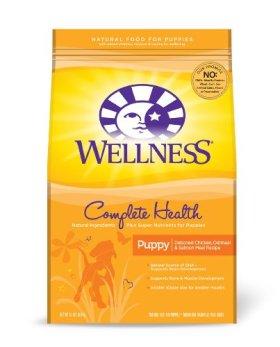 Wellness Complete Health Puppy Recipe, 15-Pound
