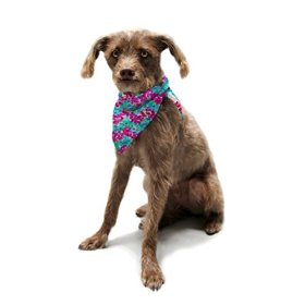 """Kess InHouse Beth Engel """"Scattered"""" Pet Bandana and Scarf, 28 by 20 by 20-Inch"""