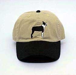 Cap: Boston Terrier