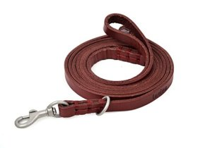 Amazon's #1 Rated Red Leather Leash for Kitty, Cats, Small Dogs, P-leash, Slip Lead, Leash and Collar in One, Canine (K9) Training Walking, Solid Hardware, For Small Puppy Dogs, Breeds, Handmade, Stitching, 5ft Long By 3/8 Inch Wide, Fashion Red, with Free Soft-touch Bag