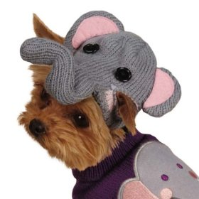 Zack & Zoey Piggy Back Pals with Dog Sweater and Hat Set, XX-Small, Elephant