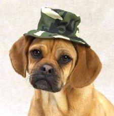 Casual Canine Green Camo Bucket Hat Medium (6″)