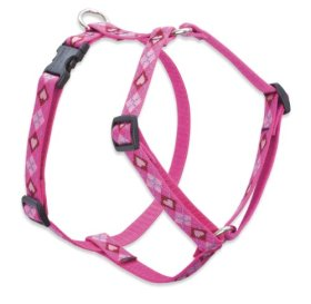 Lupine 3/4″ Puppy Love 14-24 Roman Dog Harness