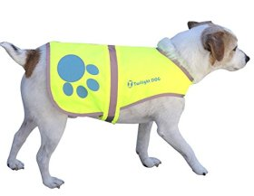 Reflective Dog Vest Medium with Adjustable Strap and Florescent Reflectors. Safety Vest for Dogs and Dog Raincoat for Walks in Rain or Snow – Reflects Car Lights for Safety. Also Used As Hunting Vest for Dogs. Lightweight & Comfortable. Bonus Reflective Velcro Band for You!