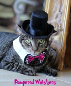 The Aristocrat Top Hat (Hat Only) (black ribbon)