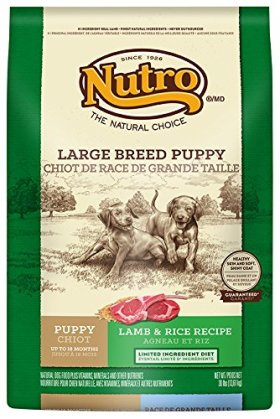 NUTRO Large Breed Puppy Limited Ingredient Diet Lamb and Rice Recipe Dog Food 30 Pounds