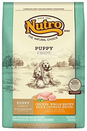 NUTRO Puppy Chicken, Whole Brown Rice and Oatmeal Recipe Dog Food 30 Pounds