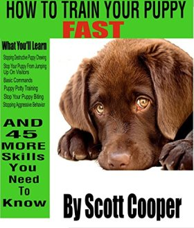 How to Train Your Puppy Fast: A 50 step guide to complete puppy and dog obedience