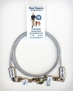 6 Ft. Chew-Proof Training Tether for Dogs & Puppies