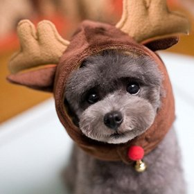 Mkono Dog Cat Pet Christmas/ Halloween Hat Christmas Party Costume Pet Costume Accessory Deer (L)