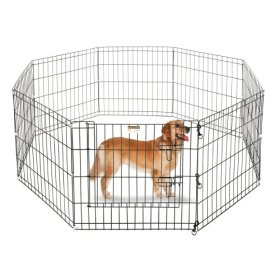 Pet Trex Playpen with High Panels, 24 x 24″