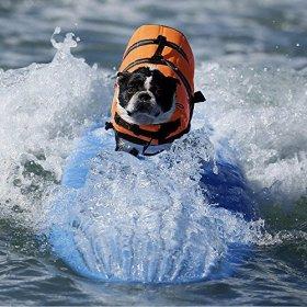 Pet Saver Life Jacket Pet Dogs Swimming life jackets(Violet)(Orange)(Blue) (Orange, Small)