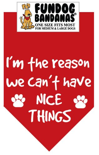 BANDANA – I'm the reason we can't have nice things for Medium to Large Dogs – red