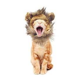 King Lion Mane Wig For Cats Small Dogs Costume Halloween Pet Cosplay with FREE Mouse Toy (While Supplies Last)