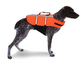 AKC Pet Life Jacket with Reflective Accents and Lift Assist Handle, Extra Extra Large, Orange