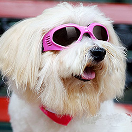 Pet Dog Sunglasses – Protective Eyewear Goggles Small Waterproof Protection (Pink)