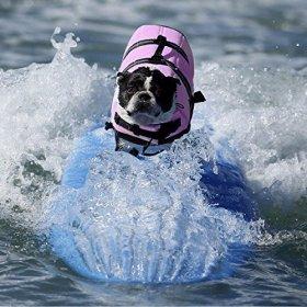 Pet Lifte Preserver – All Sizes – Dog Life Vest Jacket Doggy Life Jacket Violet Small