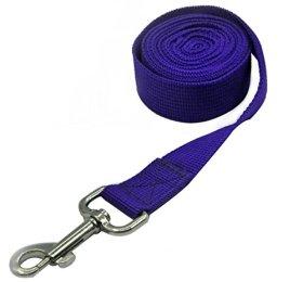 Pet Cuisine Nylon Long Dog Walking Leash For Harness Collar Cat Puppy Training Lead Rope 8 Feet Blue