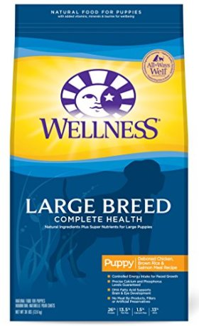 Wellness Complete Health Large Breed Puppy Chicken, Salmon & Rice Natural Dry Dog Food, 30-Pound Bag