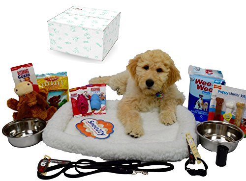 Puppy Starter Kit Bundle Deluxe Edition in Branded Gift Box – Everything You Need, All Top Name, 5 Star Brands!