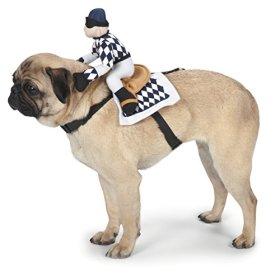 Zack & Zoey Show Jockey Saddle Dog Costume, Small