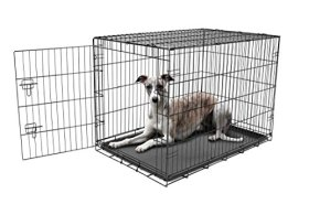 Carlson Secure and Compact Single Door Metal Dog Crate, Large