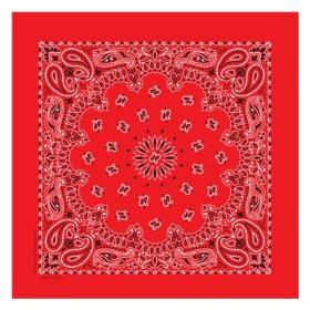 Carolina Have, A, Hank Paisley Bandannas, 22-Inch by 22-Inch, Red