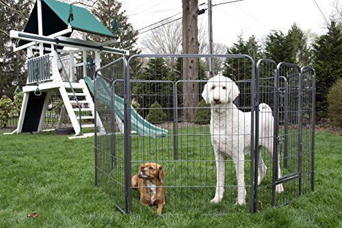 Iconic Pet Heavy Duty Metal Tube Pet Exercise and Training Playpen, 40″ Height