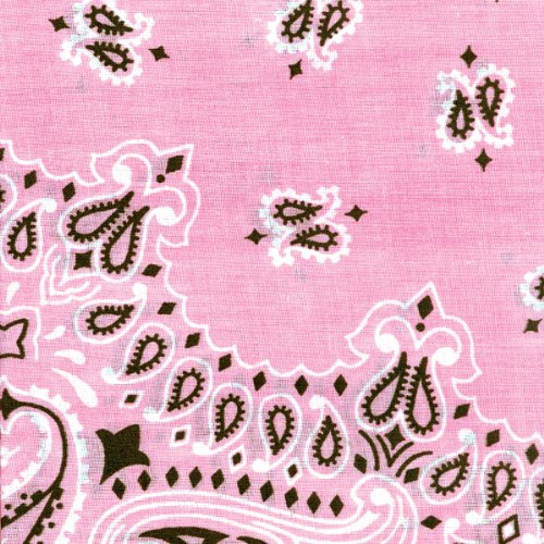Carolina Have, A, Hank Paisley Bandannas, 22-Inch by 22-Inch, Light Pink