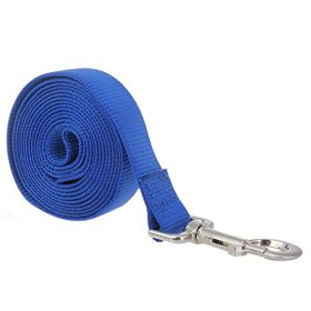 Itery Dog Leash Pet Durable Leash Strap for Puppy Pet Leash Rope 10-feet Long 1″ Wide (Blue)