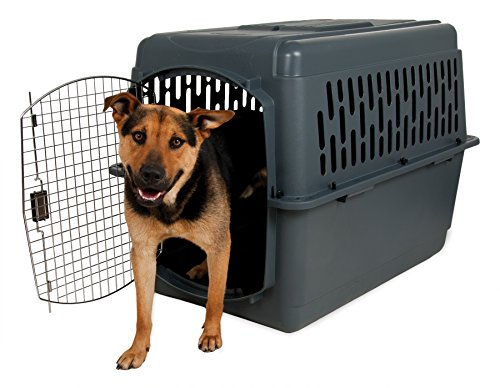 Aspenpet Pet Porter Kennel For Pets 50-70 Pounds,  Dark Gray