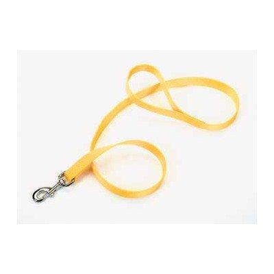 Nylon Puppy Leash Size: 0.8″ W x 48″ D, Color: Blue
