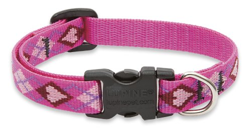 LupinePet 1/2-Inch Puppy Love 10-16-Inch Adjustable Dog Collar for Small Dogs
