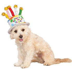 Rubies Costume Company 580410_S-M Birthday Cake Hat for Pet, Small/Medium