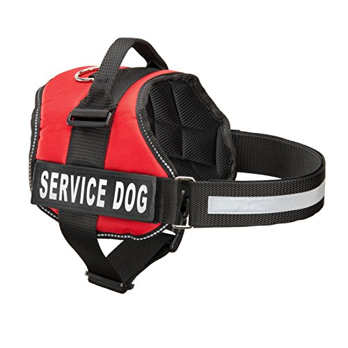 """Service Dog Vest with 2 Reflective """"SERVICE DOG"""" Patches, by Industrial Puppy (XS, Bright Red)"""