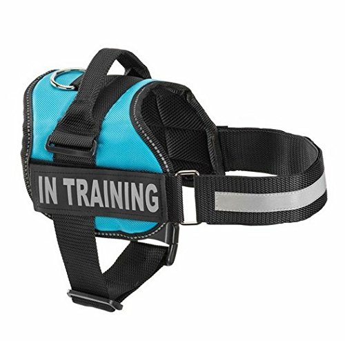 Service Dog In Training Vest Harness with 2 Reflective IN TRAINING Velcro Patches (XS, Blue)