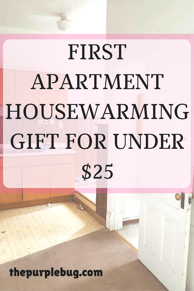 The Perfect First Apartment Housewarming Gift for Under $25