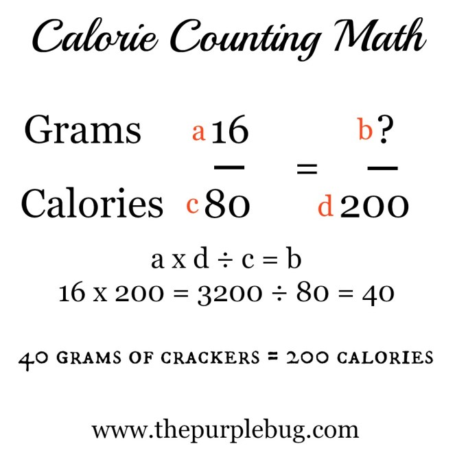 Calorie counting math. I knew high school math would come in handy someday.