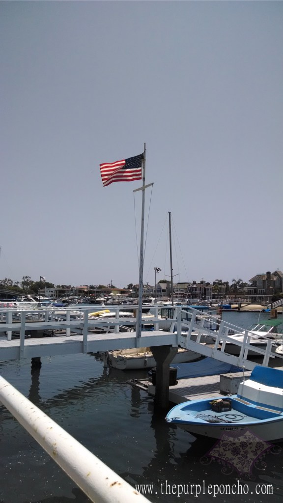 Beautiful day for a craft show by the Marina.
