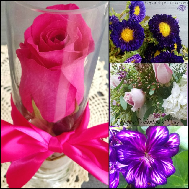 February Flower Finds by The Purple Poncho